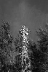 Marseille - Notre Dame (Synopsis --- Ynosang) Tags: city urban france church zeiss marseille sony paca cathdrale provence alpha notredamedelagarde a77 bonnemre ynosang carlzeissjenasonnar135mmf35m42