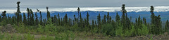 A view from Eagle Plains toward east.  Yukon, Canada. (cbrozek21) Tags: canada mountains clouds north yukon eagleplains taiga blackspruce panoramaview