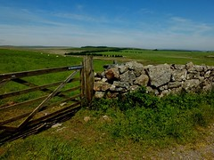 Gate & Dry Stone Wall (Evergreen2005) Tags: stone wall gate dry princetown lobsterit