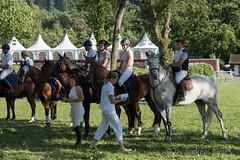 DSC06400_s (AndiP66) Tags: springen aarau samstag saturday 11juli2015 2015 juli july pferd horse schweiz switzerland kantonaargau cantonofaargau concours contest wettbewerb horsejumping springreiten pferdespringen equestrian sports pferdesport sport sony sonyalpha 77markii 77ii 77m2 a77ii alpha ilca77m2 slta77ii sony70400mm f456 sony70400mmf456gssmii sal70400g2 andreaspeters aargau ch