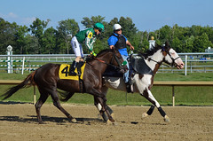 "2015-07-31 (35) r5 Tyler Conner on #4 Hereshecomesagain (JLeeFleenor) Tags: photos photography md marylandracing marylandhorseracing laurelpark jockey جُوكِي ""赛马骑师"" jinete ""競馬騎手"" dżokej jocheu คนขี่ม้าแข่ง jóquei žokej kilparatsastaja rennreiter fantino ""경마 기수"" жокей jokey người horses thoroughbreds equine equestrian cheval cavalo cavallo cavall caballo pferd paard perd hevonen hest hestur cal kon konj beygir capall ceffyl cuddy yarraman faras alogo soos kuda uma pfeerd koin حصان кон 马 häst άλογο סוס घोड़ा 馬 koń лошадь maryland"