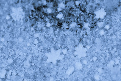 Snow Day! (brucetopher) Tags: macromondays inspiredbyasong blue snow snowfall snowday snowflake snowing crystal ice icecrystal icy formation geometric pattern macro canon 7d mattpond pa song music inspiration moody graupel puffy