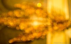 golden christmas bokeh (Robert Benatzky Picture) Tags: robertbenatzkypicture gold goldencolors bokeh lights lichter reflektionen lightreflection christmas beautiful