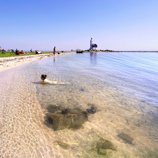 Swimming between fish at the beach of Marken