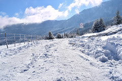 Mountain road in winter (Adnan T.) Tags: winter snow road wintertime winterwonderland wintermoments mountain mountains mountainlife nature landscape photography photographer nikon nikonphotography outdoor view outdoors travel bosnia trebevic sarajevo day daily snowy sunny sun picture pic photo clouds sky shot capture relax cold freezing freeze amazing