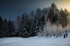 (raimundl79) Tags: wow tamron2470mm travel bestpicture beautifullandscapes landschaft landscape explore entdecken fotographie flickrexploreme österreich austria winter schnee snow cold image myexplorer nikon nikond800