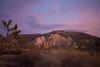 Dusk in Joshua Tree National Park, CA (ericcb) Tags: red bluehour joshuatree joshuatreenationalpark nationalpark california nikon d5200 nikond5200 desert sunset dusk