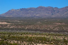 View of the San Pedro River Valley and the Galiuro Mountains; San Pedro River Valley, AZ (Lon&Queta) Tags: 2014 arizona cacti desert flickr gps landscapes mountains panoramio pinalcounty saguarocactuscarnegieagigantea sanpedrorivervalley usa unitedstatesofamerica