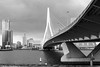 Erasmus Angle (frank_w_aus_l) Tags: rotterdam erasmus erasmusbrug monochrome light cloud netherlands niederlande architecture nikkor bw noiretblanc netb sw zuidholland nl df