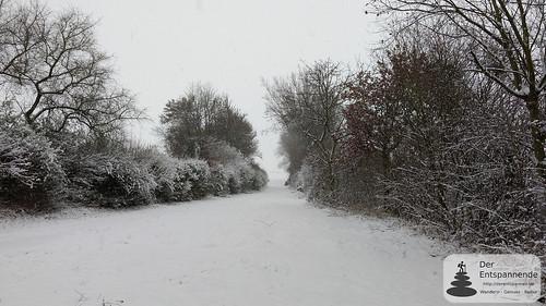 Verschneites Selztal