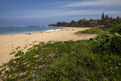Haena Beach, Kauai (Stephen P. Johnson) Tags: kauai hawaii places haenastatepark haena beach201701150021 pacific ocean beach cpast wave