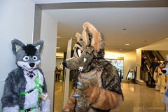 DSC_0148-383 (Barkshark) Tags: fc further confusion 2017 furry con convention fursuit