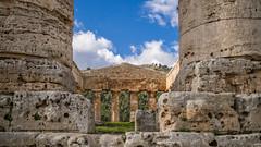 Segesta-25 (aramshelton) Tags: sicily greek greektemple segesta ancient