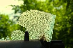 Shatterproof (violetchicken977) Tags: shatterproofglass window vandalism green abstract ogt