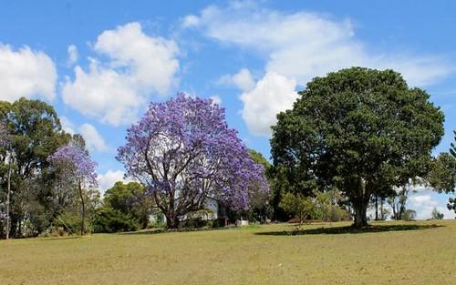 1715 Sextonville Road, Kyogle NSW 2474