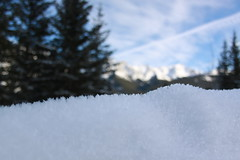 Nakiska ski area, Alberta, Canada (nikname) Tags: canada albertacanada mountains candianmountains albertamountains skiresort albertaskiresorts hwy1 transcanadahighway trees