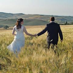 looking for the future (Claudia Gaiotto) Tags: wedding love field 50mm gold nikon mj grain future d610