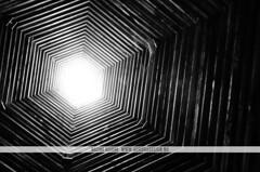 MONA, Hobart (Naomi Rahim (thanks for 4.9 million visits)) Tags: wood travel bw abstract art lines blackwhite nikon gallery interior australia mona tasmania hexagon teepee hobart octagon mofo 2015 travelphotography nikond7000 museumofoldnewart
