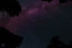 Milky Way From Woodland Valley