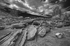 Love Rocks #2 [Explore] (louieliuva) Tags: