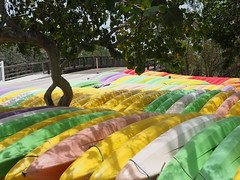 John Pennekamp Coral Reef State Park (mattheuxphoto) Tags: color kayak florida atlanticocean kayaks floridakeys keylargo johnpennekamp johnpennekampcoralreefstatepark microfourthirds omdem10