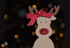 Macro Mondays Holiday Bokeh (Harry McGregor) Tags: macromondays holidaybokeh depthoffield reindeer rudolph rudelle yule nikon d3300 18 december 2016 christmas holiday festival winter christmastree harrymcgregor