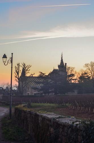 Winter Sunset in Aloxe-Corton
