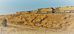 The Passing (In my Youth) Tags: bnsf williams arizona trains bypass atsf airport road