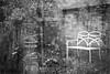 (frscspd) Tags: 70090025 20161025 pentax pentaxmx mx takumar takumar58mm 58mm ilford ilfordxp2400bw ilfordxp2 xp2 film filmgrain cambridge berthacottage bertha home bench garden reflection urn bokeh swirlingbokeh catseye catseyeeffect