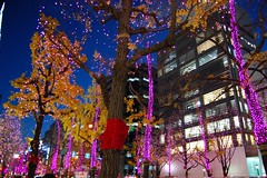Osaka (mademoisellelapiquante) Tags: osaka japan asia eastasia lights