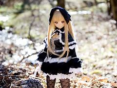 謹賀新年 (Tehu O (てふ男)) Tags: doll dddy dollfiedream dd d3200 niimi haruka 新見遙佳 ドール volks