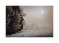 And I see a light (cardijo) Tags: austria österreich landscape landschaft winter snow schnee analog film portra160 canon fd 20mm sun sonne
