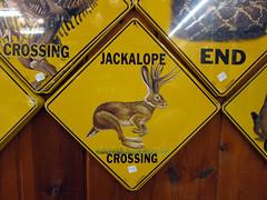 Wall Drug, South Dakota (pr0digie) Tags: wall southdakota drug store jackalope sign