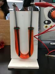 Before electrolysis (MerilynW) Tags: electrolysis sodium chloride