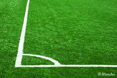 corner lines on soccer grass (Mimadeo) Tags: white game green texture field grass playground sport corner football play angle stadium background soccer border lawn ground line turf textured