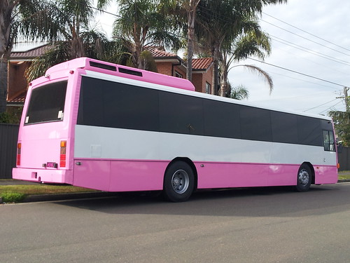 Pink Party Bus - 50 Seater