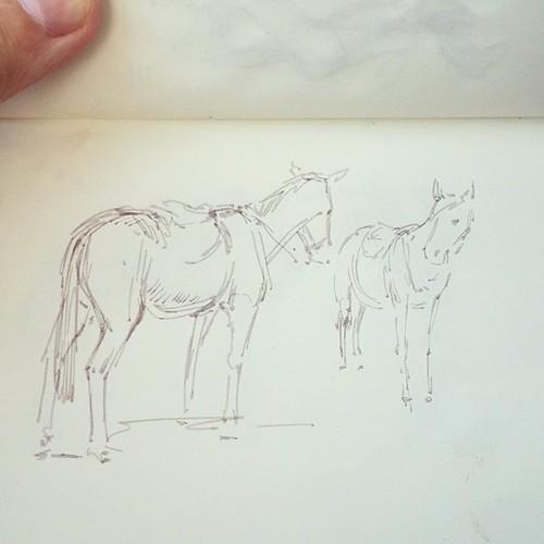 Еще я рисовал лошадей.. они двигались(