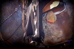 En mi rosillo moro (Eduardo Amorim) Tags: horses horse southamerica argentina criollo caballo cheval caballos spur cavalos sperone pferde poncho cavalli cavallo cavalo gauchos pferd ayacucho loro pala apero chevaux gaucho cavall staffa 馬 américadosul loros stirrup platería gaúcho estribo amériquedusud provinciadebuenosaires лошадь recado gaúchos 马 sudamérica esporas suramérica américadelsur südamerika crioulo caballoscriollos criollos espora حصان pilchas espuelas buenosairesprovince pilchasgauchas steigbügel recao americadelsud plateríacriolla espuela crioulos cavalocrioulo americameridionale caballocriollo eduardoamorim cavaloscrioulos estribera estrivo étrier
