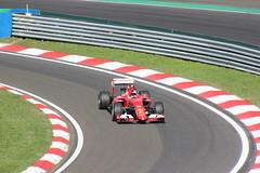 Hungaroring 2015 F1 Race Day (trebography) Tags: race one 1 hungary day sunday budapest july f1 formula hungaroring motorsport 2015