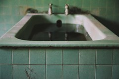 (epicsymphony) Tags: trees green abandoned water forest canon singapore ghost sigma haunted explore greenery bathtub sg exploration istana slopes urbex 1750mm woodneuk 700d