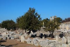 IMG_441a3 (goaniwhere) Tags: ephesus ephesusturkey turkey ancientcity historicsite history rubble ruins grandtheatre libraryofcelsus mycenean