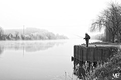 le pêcheur givré DxOFP RolleiOrho25 DSF2742 (mich53 - thank you for your comments and 3,5M view) Tags: monochrome pêcheur froid givre fleuve brouillard paysage solitude noirblanc fujifilm xf1655mmf28rlmwr xt1 manteslaville seine îledefrance sinner cold frosted river fog landscape blackwhite einfarbig fischer kalt frost fluss nebel landschaft einsamkeit saisons hiver jahreszeiten winter seasons greatphotographers 4winter 霜 冷たいです 冬 季節