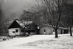 #costesti #romania #ro #fujifilm #fuji (alxandru555) Tags: ro romania costesti fujifilm fuji xe2 winter snow bw monochrome nature landscape 35mm vsco