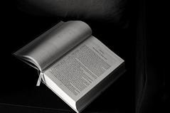 Reading (Leguman vs the Blender) Tags: tarbes bigorre gascogne bw nikond90 flickrtravelaward