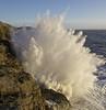 Porcupine or Pineapple (pauldunn52) Tags: wave scrashing explosion ogmore by sea deeps cliffs