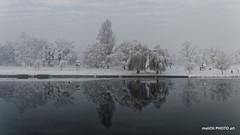 Snow in Karlovac winter 2017 (malioli) Tags: snow winter weather river riverside tree nature park karlovac croatia europe canon hrvatska