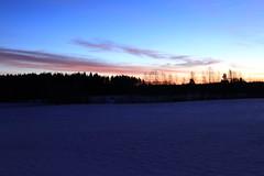 The Sun rise_2017_01_20_0013 (FarmerJohnn) Tags: sun rise sunrise kuu moon jupiter auringonnousu taivas sky morning aamutaivas taivaanranta pilvet clouds colors colorfull värikäs taivi winter january tammikuu suomi finland laukaa valkola anttospohja canon7d canonef163528liiusm canon 7d juhanianttonen