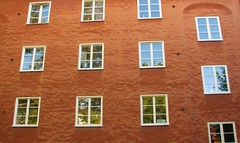 windows 12 - ahead of Microsoft... windows 12 - à frente da Microsoft... (AnaValle) Tags: árvore reflexo laranja janela textura