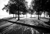 sirmione 10 (formicacreativa) Tags: sirmione lake lago garda