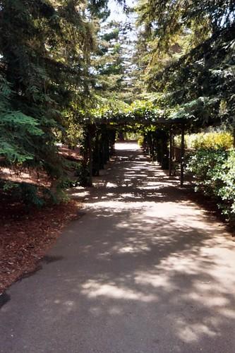 Davis Bike Path